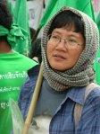 www.thaingo.org
