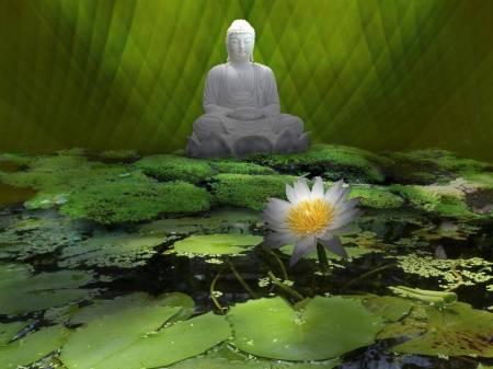 picture-buddha