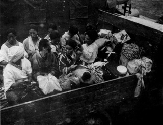 Comfort women alike the rubbish can be dumped into dusbin (http://www.squidoo.com/comfort-women)